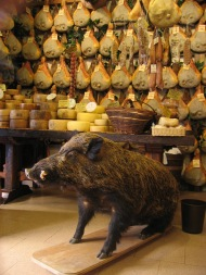 Wild Boar Norcia Shop